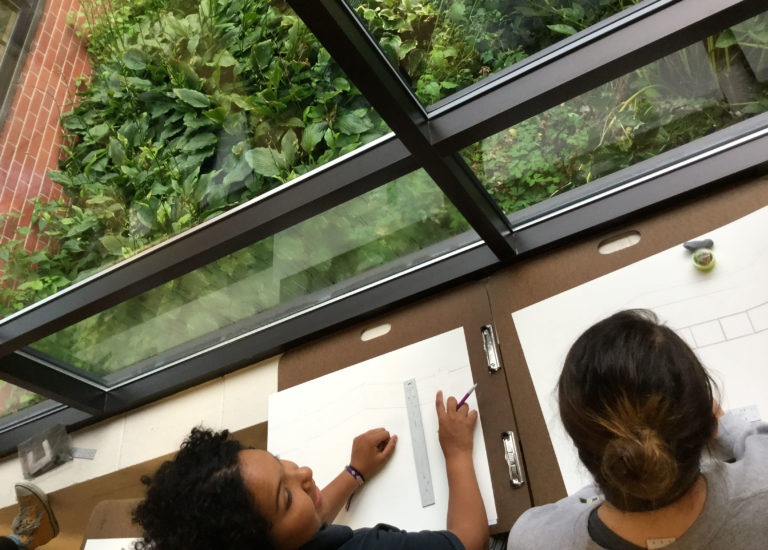 Student-artists capture the contours of the courtyard