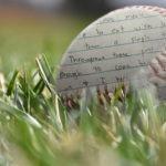 baseball close-up words