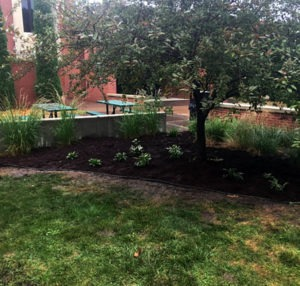 eagle scout landscape project
